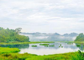 lago-del-coccodrillo-nel-parco-cat-tien.jpg