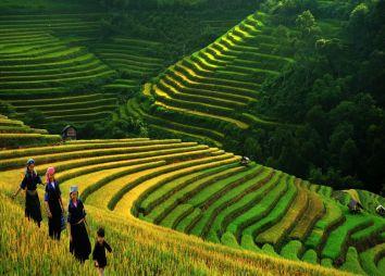 Vietnam_dtv.jpg