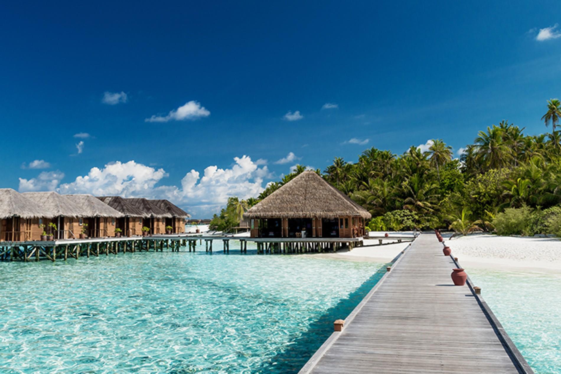 Quando andare alle Maldive? Il periodo migliore per godersi ...