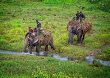 Chitwan-National-Park-in-Nepal.jpg